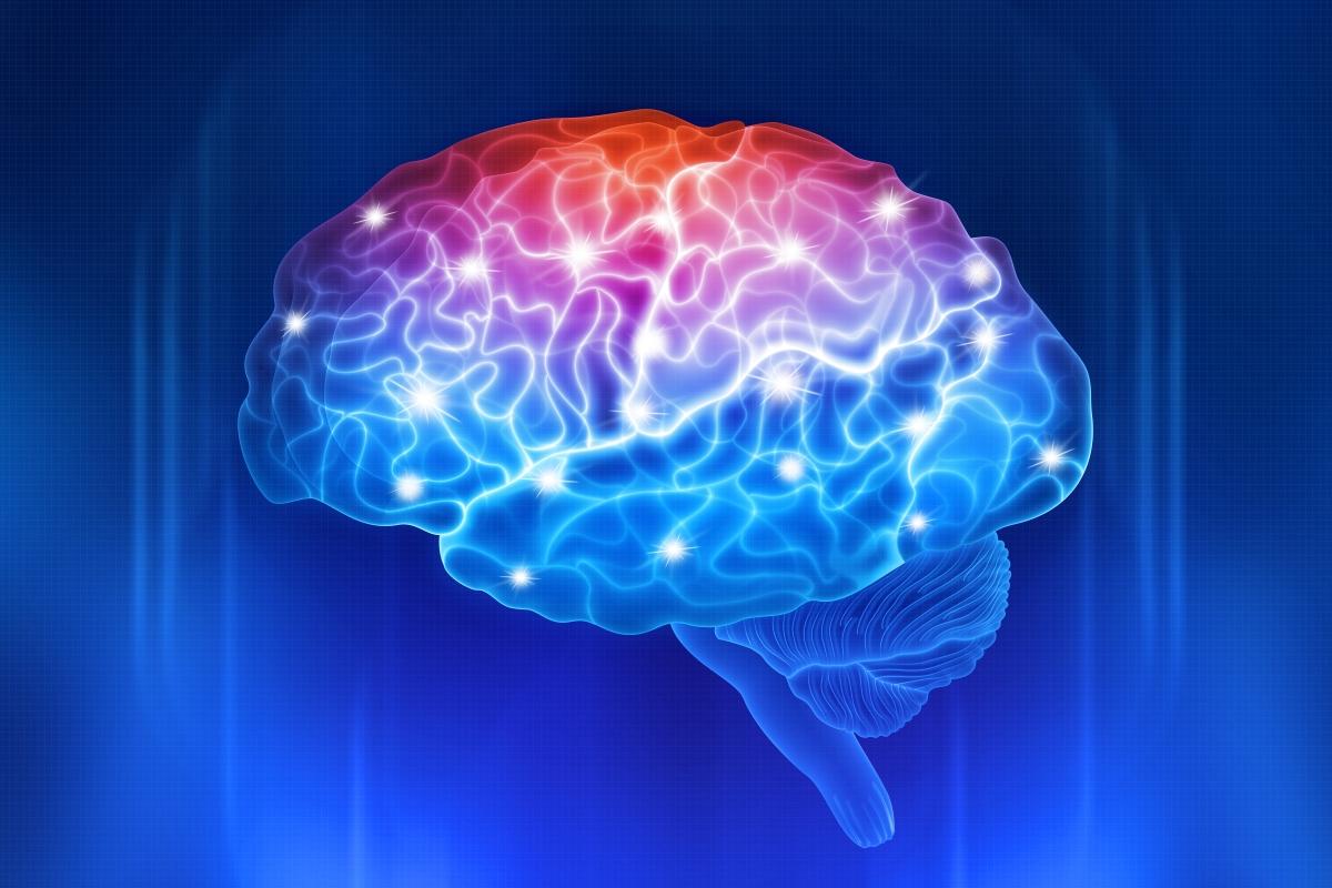Diet and Brain